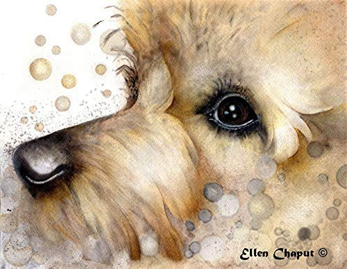 Australian Terrier art limited edition signed giclee watercolor print on watercolor paper or canvas.