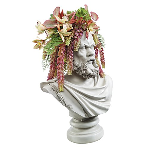 Design Toscano Bust Planter of Antiquity Statue, The Philosopher Socrates