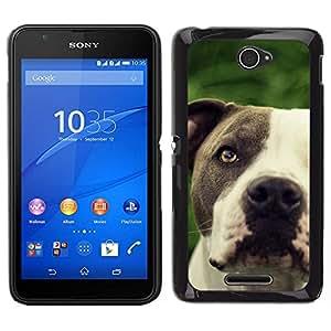 EJOY---Cubierta de la caja de protección para la piel dura ** Sony Xperia E4 ** --Pitbull friendly Negro hocico del perro blanco