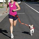 Baiyu Hands Free Dog Leash Running Exercise Lead Harness Adjustable Waist Belt for Training, Walking, Jogging, Hiking - Red