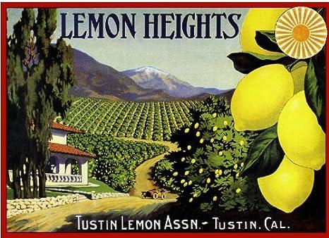 Los Angeles Nasturtium Flowers Orange Citrus Fruit Crate Label Art Print