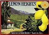 Tustin, Orange County Lemon Heights Scenic Lemon Citrus Fruit Crate Box Label Art Travel Advertisement Poster