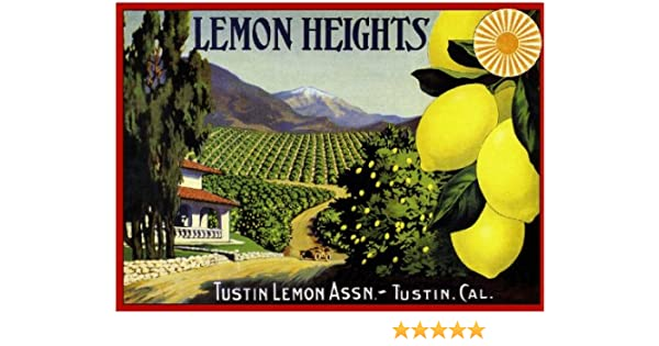 Montalvo Ventura County By the Sea Lemons Citrus Fruit Crate Label Print