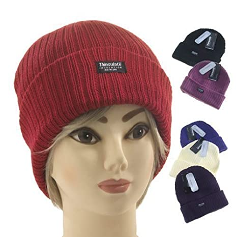 Amazon.com  LADIES THINSULATE BEANIE HAT FLEECE LINED WINTER SKI RIB  KNITTED CAP 40 GRAM 3 M (6 DIFFERENT COLOURES) (CREAM) by Flagstaff  Toys    Games 62ad76d3593