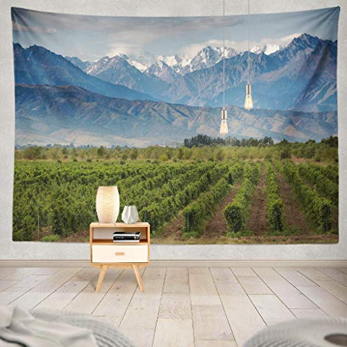(KJONG Vineyard Wine Italy Organic Agriculture Andes Estate Farm Fruit Garden Green Decorative Tapestry,60X80 Inches Wall Hanging Tapestry for Bedroom Living Room)