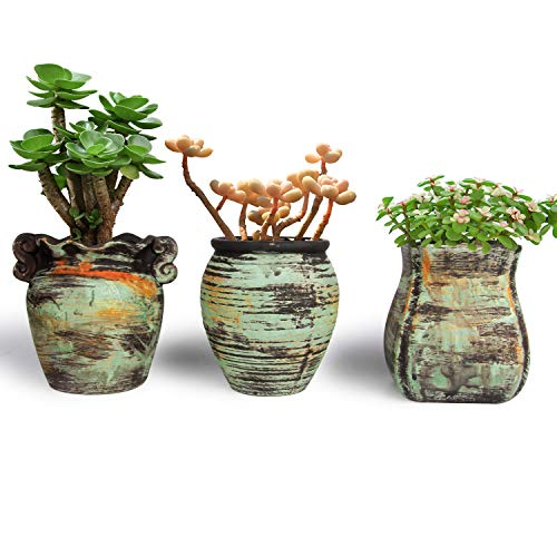 - T4U New Ceramic Succulent Pot Set of 3, Colorful Oil Painting Style Porcelain Planter Flower Herbs Container for Home office Porch Balcony Living Room Bed Room Decoration Indoor Outdoor Christmas Gift