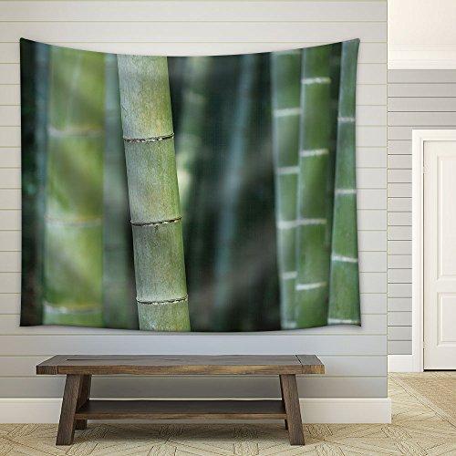 Zen Concept Bamboos Fabric Wall