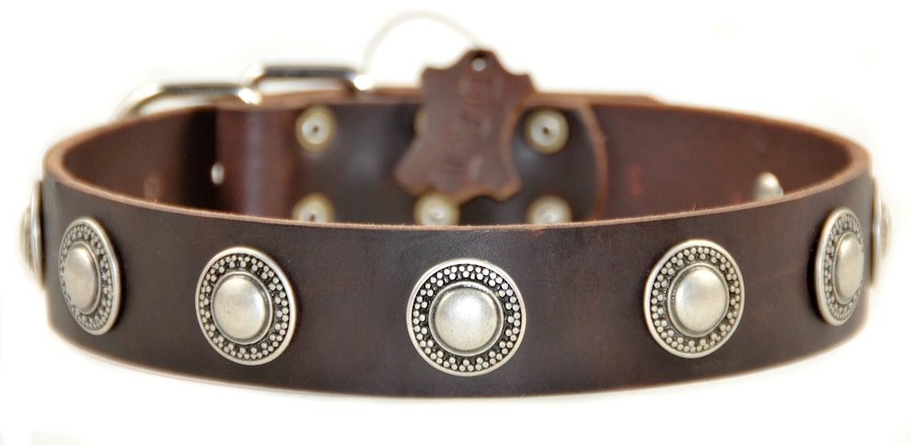 Dean and Tyler  SIMPLE TREASURE  Dog Collar Nickel Hardware Brown Size 30  x 1 1 2  Width. Fits neck size 28 Inches to 32 Inches.