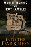 Into The Darkness (The Ridge Falls Series Book 1)