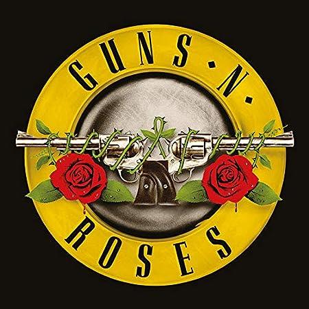 Amazon.com: Guns N' Roses Bullet Logo Classic Album Cover Canvas ...