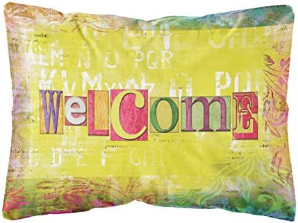 Caroline s Treasures SB3097PW1216 Artsy Welcome Canvas Fabric Decorative Pillow, 12H x16W, Multicolor