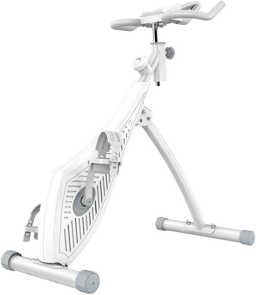 DRLGC Bicicleta Estática Plegable, Control De Resistencia Magnética De 8 Velocidades, Ajuste, Adelgazamiento, Mini Equipo De Ejercicios para Interiores, Adecuado para Toda La Familia: Amazon.es: Deportes y aire libre