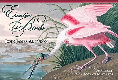 John James Audubon: Exotic Birds Book of Postcards: John