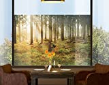 Window Mural Morning Forest window sticker window film window tattoo glass sticker window art window décor window decoration Size: 56.7 x 85 inches