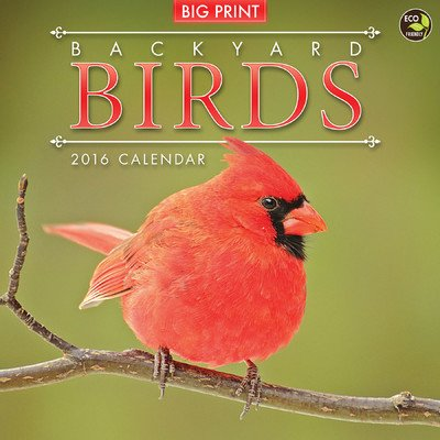 Backyard Birds (Big Print) Wall Calendar by TF Publishing 2016