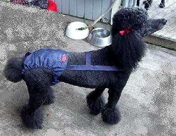 Joybies Pantalones de pellizco duraderos para perro galgo adulto femenino X Grande Mezclilla