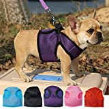 Glumes Dog Harness Padded Vest All Weather No Pull Step-in Mesh Easy to Put on and Take Off Snug and Comfortable Best Pet Supplies