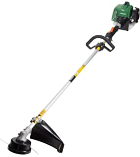 Amazon.com : Homelite 26cc Gas Powered 17 in. Curved Shaft ...