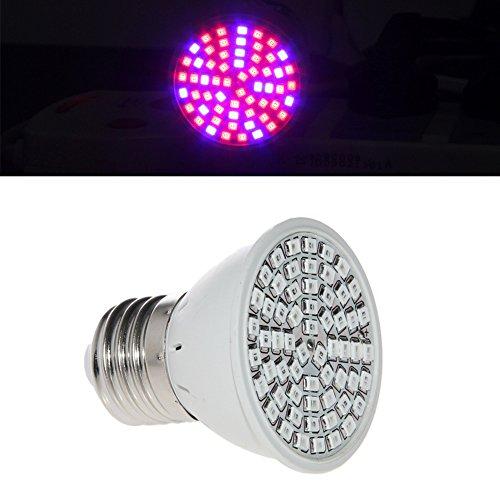 Cheap SCASTOE AC 220V E27 3528 38/60/72/80 LED Grow Light Full Spectrum Flower Plant Lamp Hot (60LED(41red+19blue))