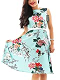 YMING Women Vintage Dress Sleeveless Swing Dresses Party - Best Reviews Guide