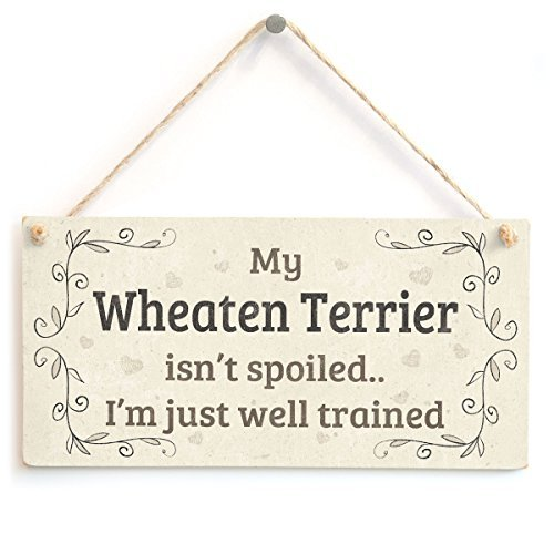 My Wheaten Terrier Isn't Spoiled I'm Just Well Trained - Shabby Chic Style Home Accessory Gift Sign For Wheaten Terrier Dog Owners by Button Hill Cottage (Terrier Button)