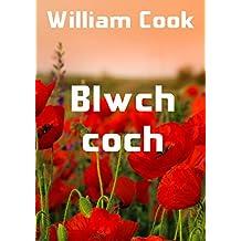 Blwch coch (Welsh Edition)