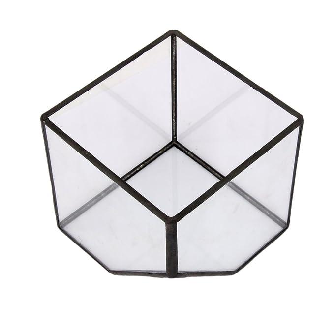 3 opinioni per Vetro Terrario Cubo Fata Giardino Di Casa Formato Serra S