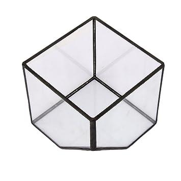 Glasterrarium Cube Fairy Gartenhaus Gewaechshaus Groesse S Amazon
