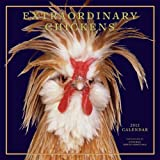 chickens abrams - Extraordinary Chickens 2012 Wall Calendar by Stephen Green-Armytage (2011-08-01)