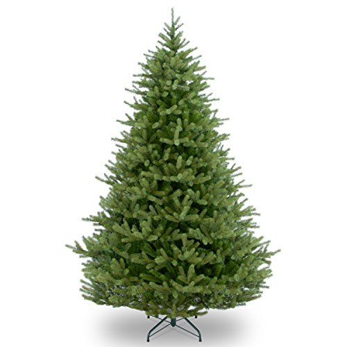 National Tree Norway Spruce, Green -  ADULT