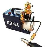 High Pressure Air Compressor Electric Air Pump 220V 4500PSI 30MPA 40L/MinInflation Bottle PCP Inflator Pneumatic Airgun