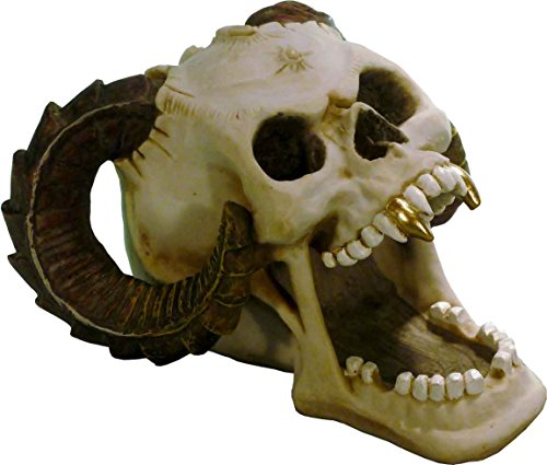 Voodoo Type 2829-02 Satanic Demon Devil Human Skull-Realistic Menacing Evil Worship Replica - Home Decor by Nose (Gruesome Halloween Ideas)