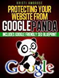 Protecting Your Website From Google Panda - Includes Google Friendly SEO Blue Print