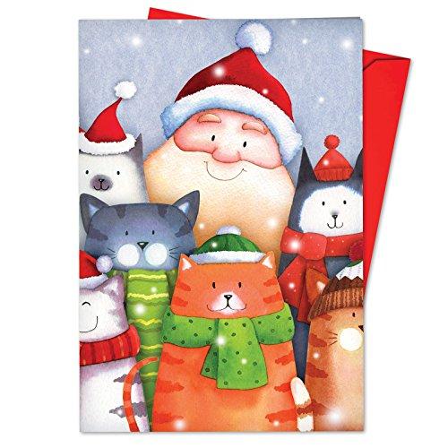 12 'Santa Selfies' Boxed Christmas Cards with Envelopes 4.63 x 6.75 inch, Silly Santa Claus and Cute Kitty Cats Christmas Notes, Adorable Santa Cartoon Holiday Cards B6738JXSG