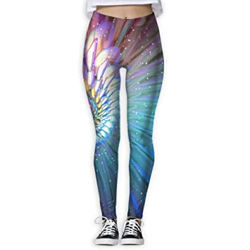 9c5a51973dfc5 Image Unavailable. Image not available for. Color: ZGXJJPP Trendy Design  Workout Leggings - Fun Fan of The ...