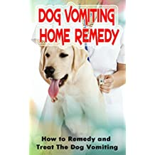 Dog Vomiting Home Remedy: How to Remedy and Treat The Dog Vomiting