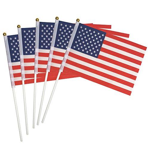 ROOTLISA 50 Pack Hand Held Small American US