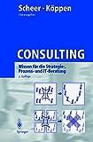 Consulting: Wissen für die Strategie-, Prozess- und IT-Beratung (German Edition)