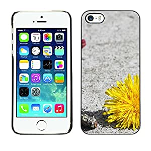 Paccase / SLIM PC / Aliminium Casa Carcasa Funda Case Cover - Plant Nature Forrest Flower 34 - Apple Iphone 5 / 5S