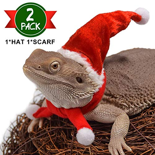 Halloween Costumes For Bearded Dragons (WATFOON Bearded Dragon Lizard Santa Hat with Scarf Christmas Costume Set Xmas Clothes Outfit, Perfect for)