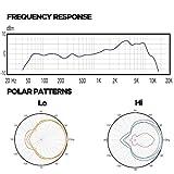 Audix F2 Instrument Dynamic