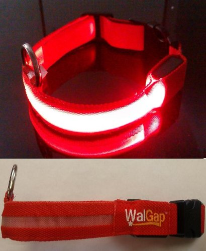 LED Flashing Lights Dog Collar Nylon (Red, Large)