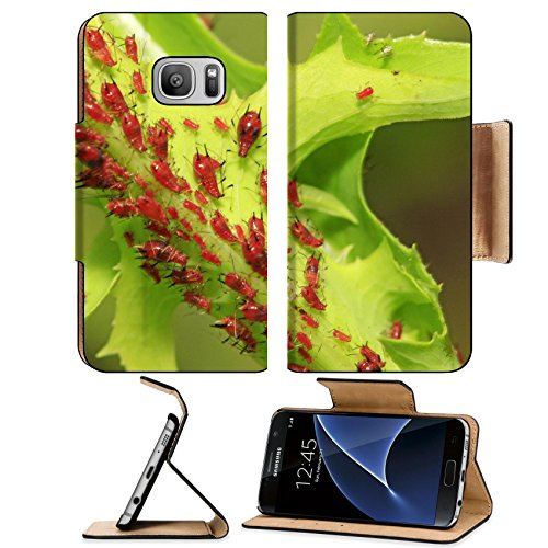 liili-premium-samsung-galaxy-s7-flip-pu-leather-wallet-case-a-kind-of-insects-named-aphid-on-green-i