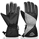FengNiao Ski Gloves Mens Womens Winter Warm Glove 3M Thinsulate Snowboard Snowmobile Cold