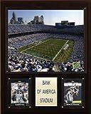 NFL Bank of America Stadium Plaque