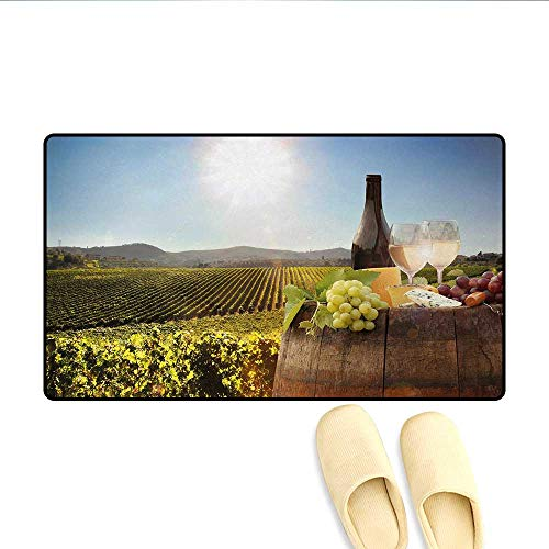 Bath Mat,White Wine with Barrel on Famous Vineyard in Chianti Tuscany Agriculture,Door Mat Increase,Green Brown Pale ()
