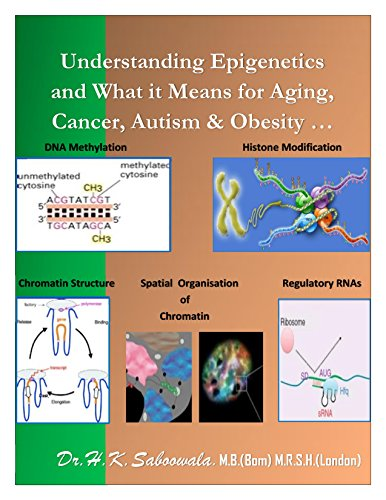 Understanding Epigenetics and What it Means for Aging, Cancer, Autism & Obesity ...