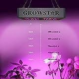 GROESTAR Cree COB LED Grow Light, Growstar 600W