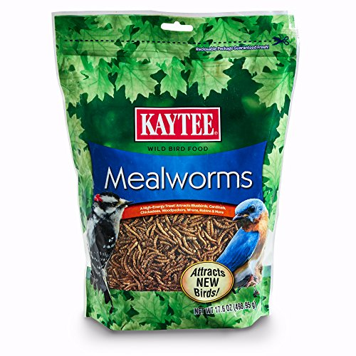 - Kaytee Mealworms, 17.6 oz