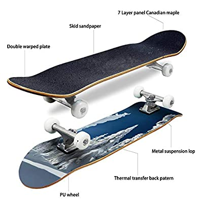 EFTOWEL Skateboards Winter landacape Mountain Stock Pictures Royalty Free Photos Classic Concave Skateboard Cool Stuff Teen Gifts Longboard Extreme Sports for Beginners and Professionals : Sports & Outdoors